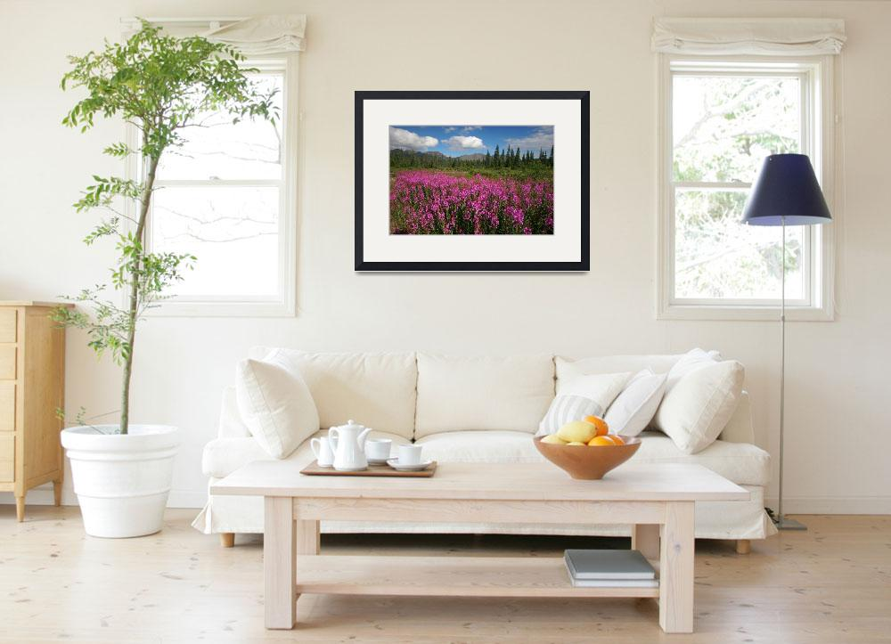 """""""Fireweed, mountains, & clouds in Alaska""""  by jansmith"""