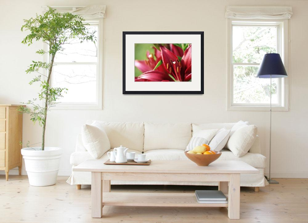 """""""Red Lilies&quot  (2012) by tracyjade"""