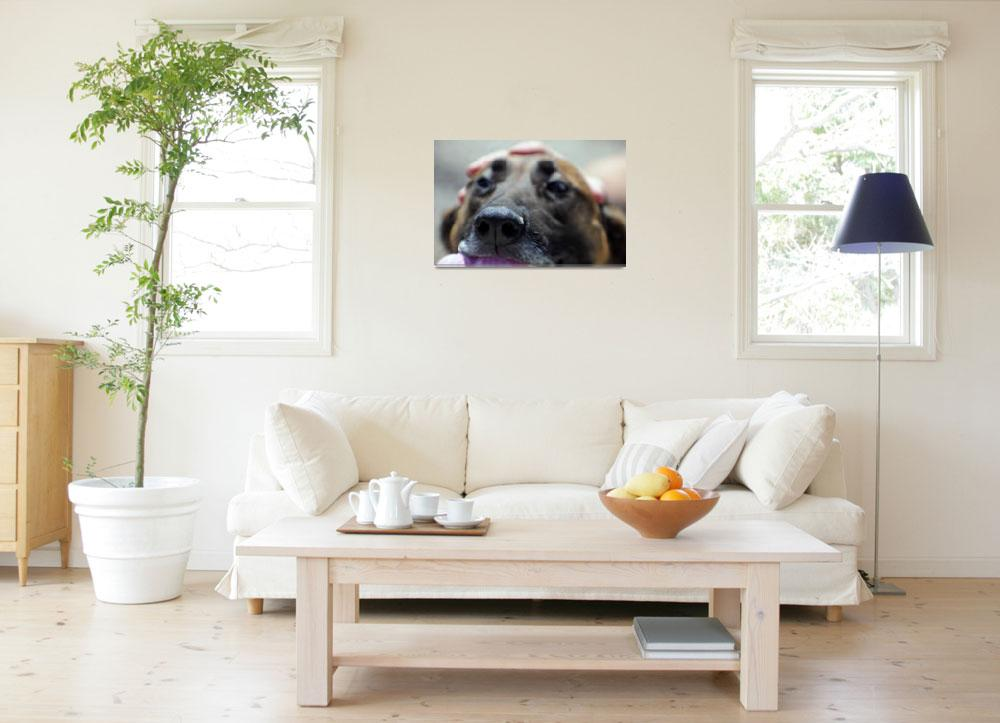 """""""A Dogs Sense of Smell""""  by Alleycatshirts"""