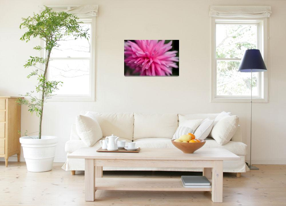 """Image ID# Whalen-090714-1413 - Butchart Gardens Pi&quot  by JoshWhalen"