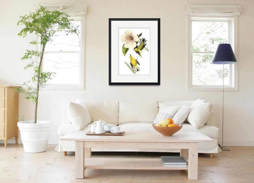 """Blue-Winged Warbler Bird Audubon Print&quot  by ArtLoversOnline"