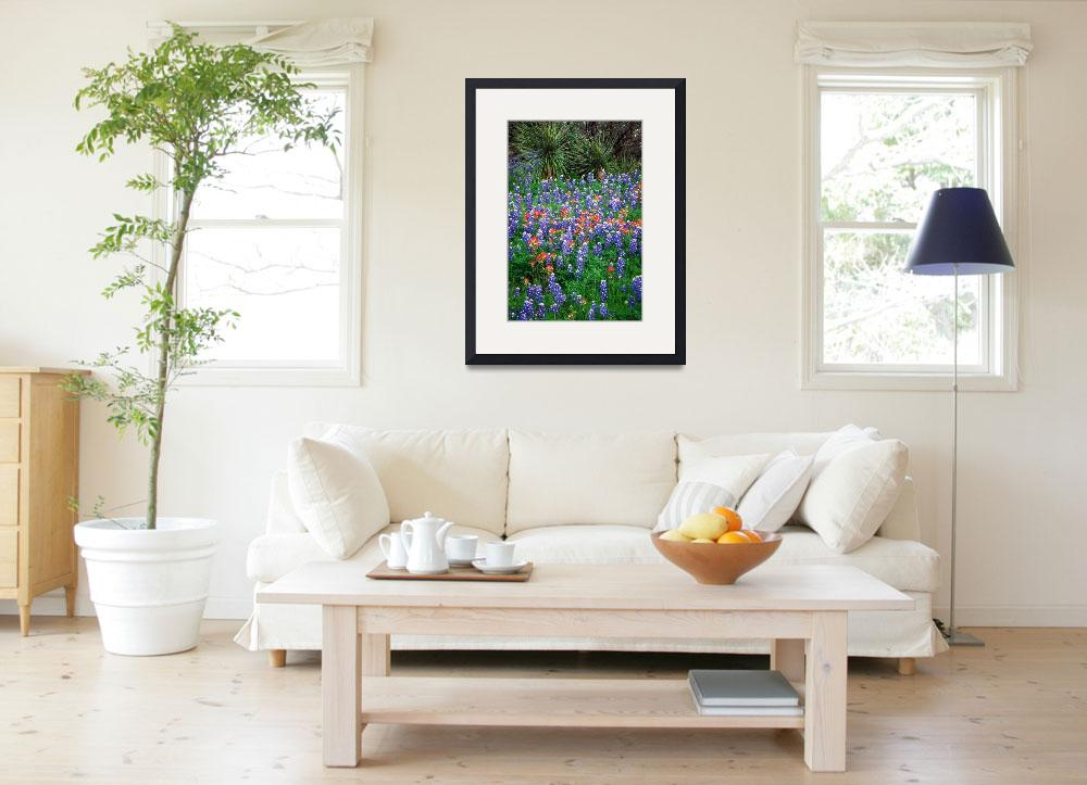 """""""Bluebonnets and Yucca&quot  (2000) by Inge-Johnsson"""