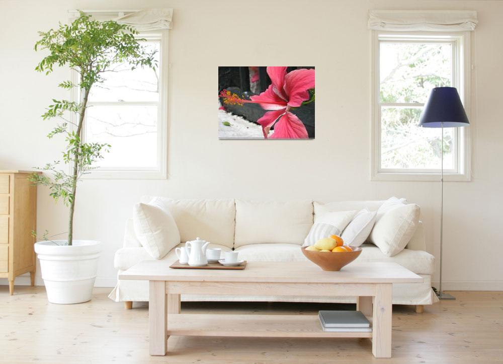 """Bermuda Flower 2""  (2007) by Berry-good-photos"