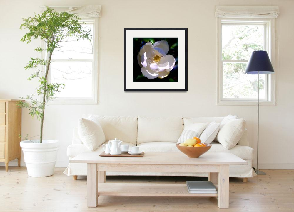 """""""Magnolia Two&quot  (2008) by Artlife"""