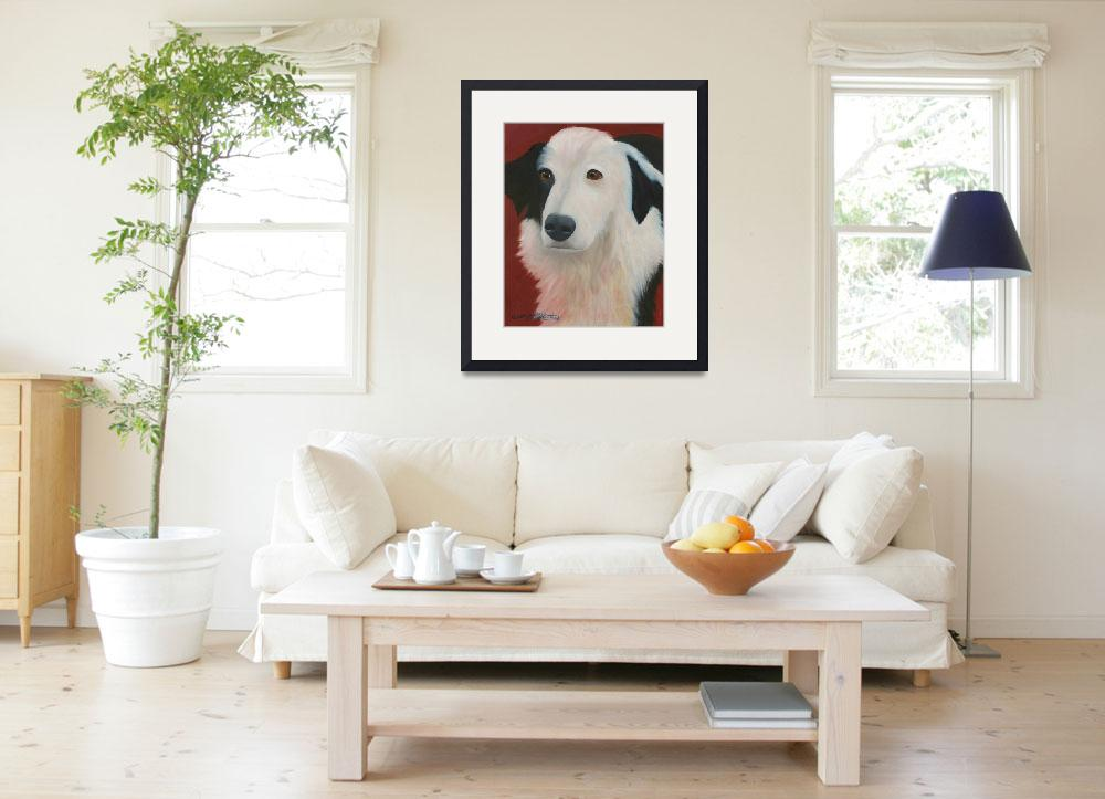 """""""Border Collie Mix&quot  (2009) by TropicalExpression"""