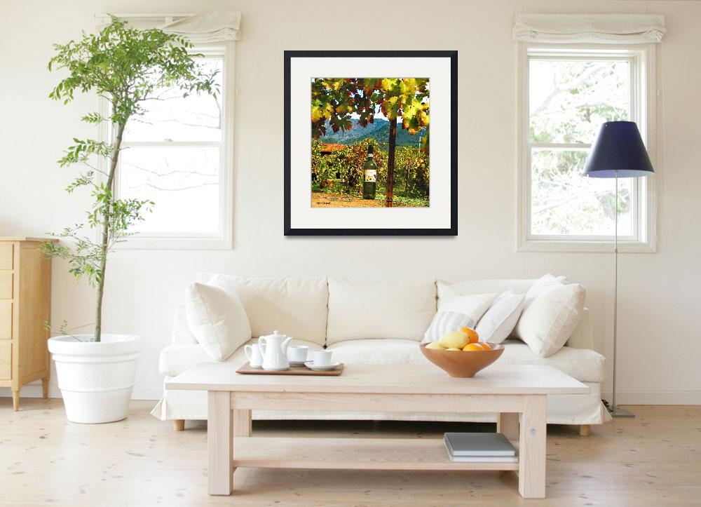 """""""Sonoma Summer Wine&quot  (2009) by nicoindo"""