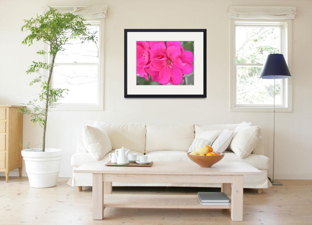 """""""pink flowers 5""""  (2010) by sb1photography"""