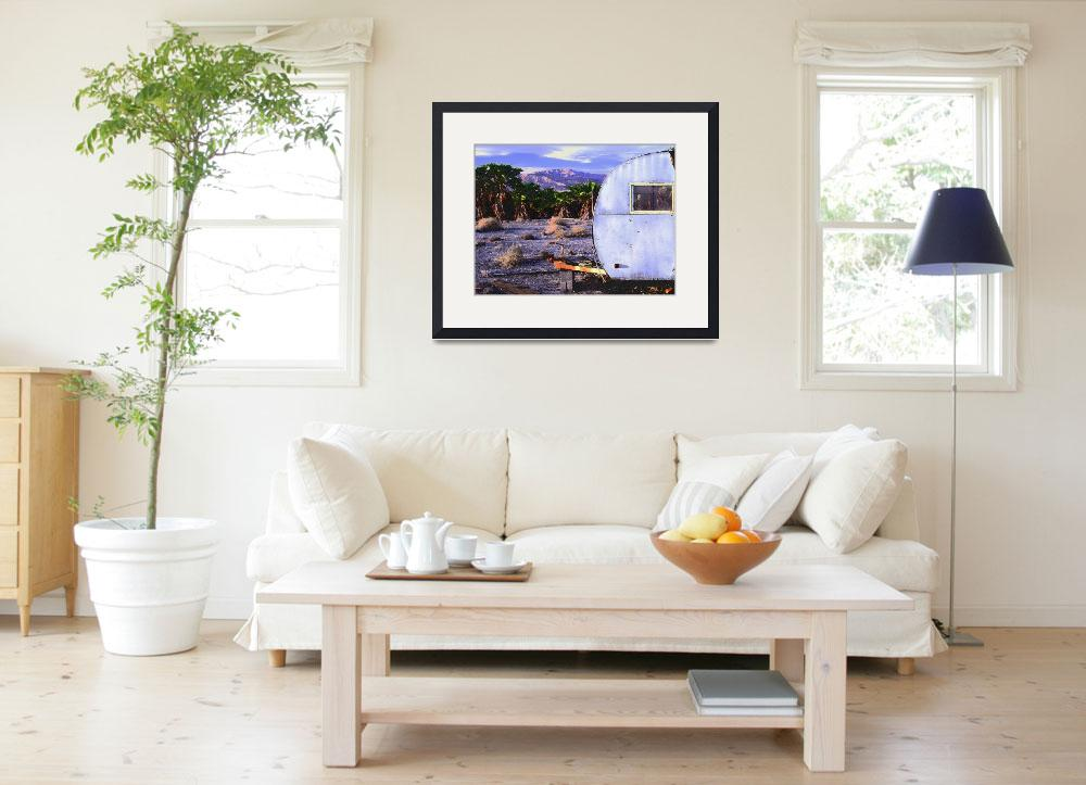 """""""""""Ocotillo Home""""&quot  (2008) by Uhlinger"""