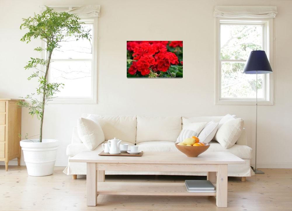 """Expressive Floral Red Geraniums E131716""  (2016) by MasArtStudio"