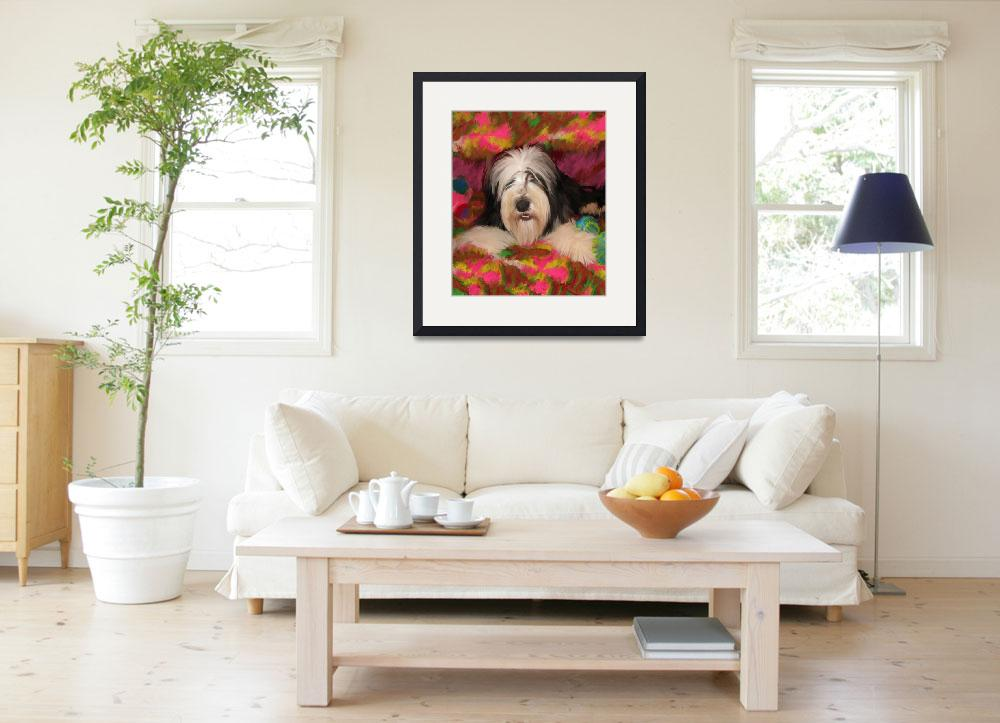 """""""Bearded Collie posing&quot  (2011) by kring"""