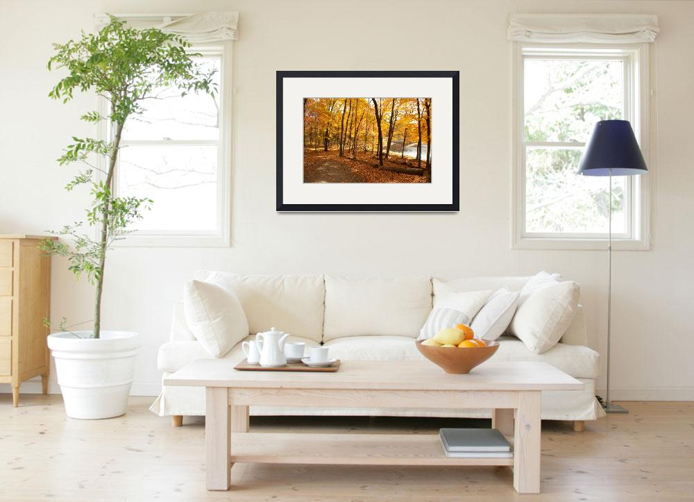 """""""Autumn in Connecticut""""  (2010) by greatcaptures"""