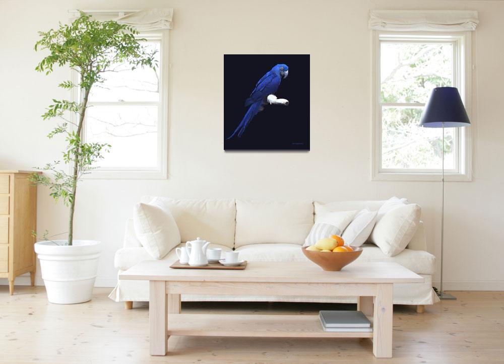 """The Blue Beauty""  by AnimalsbyDiDi"