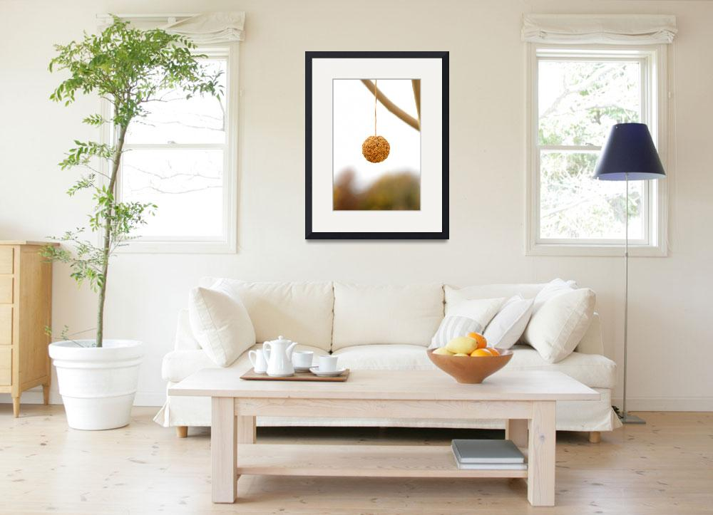 """""""A ball plant&quot  (2010) by pulen"""