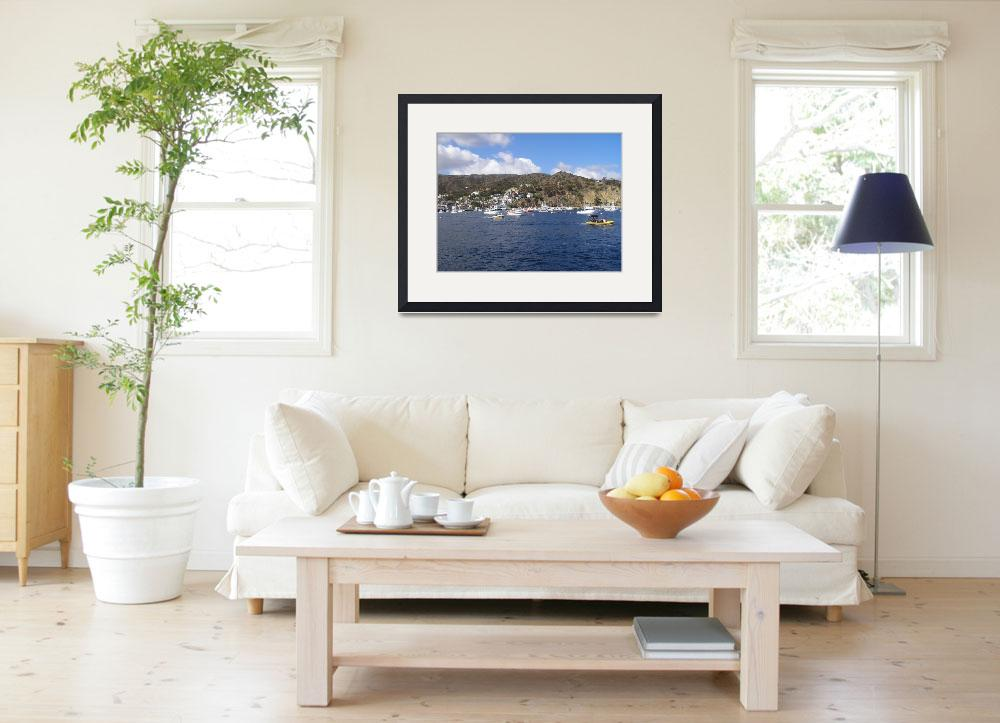 """""""Catalina Island&quot  by LPrice"""
