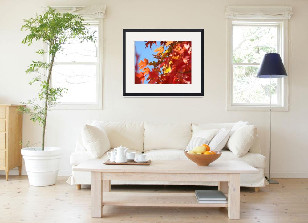 """""""Colorful Fall Tree Leaves art prints Autumn Baslee&quot  (2011) by BasleeTroutman"""