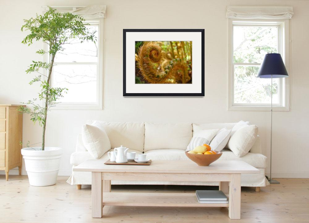 """Fern Fronds art prints Forest Ferns Nature Baslee&quot  (2010) by BasleeTroutman"