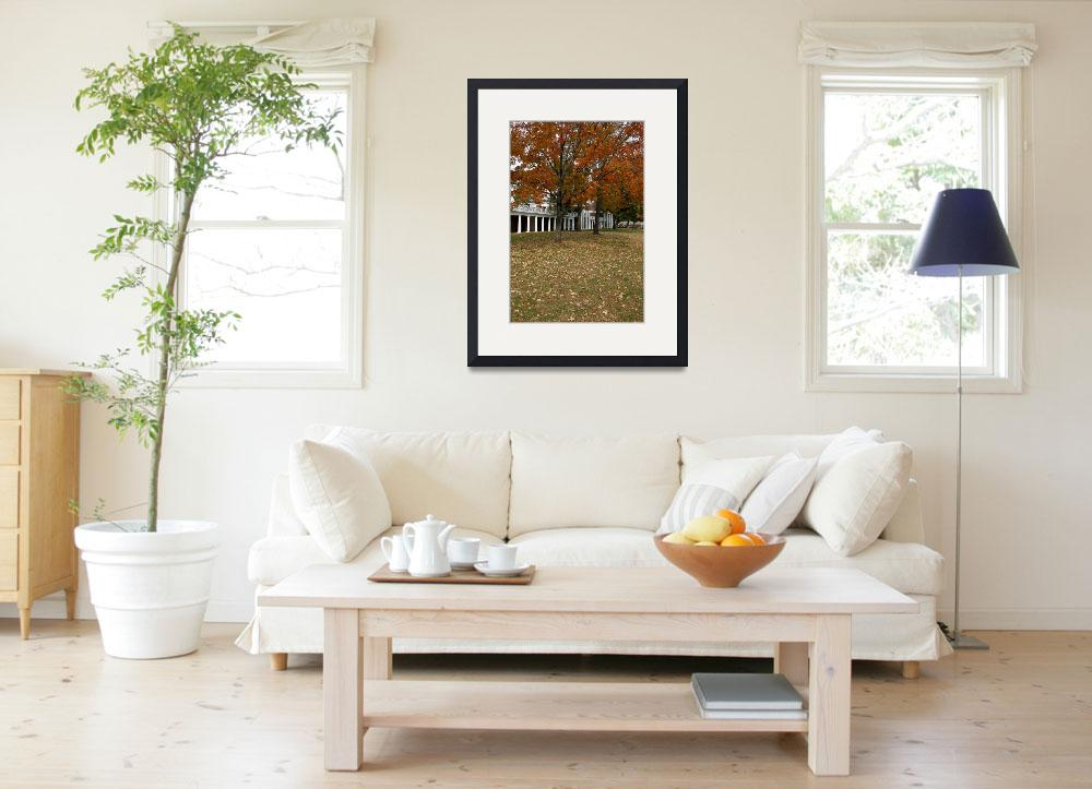 """""""Fall Leaves on The Lawn, University of Virginia, U&quot  (2003) by fineartphoto"""