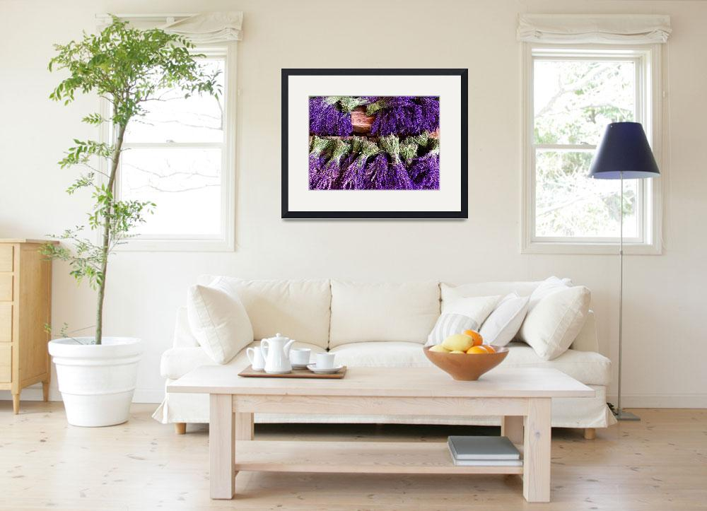 """""""Provence Lavender Bunches&quot  by MaryLorArt"""