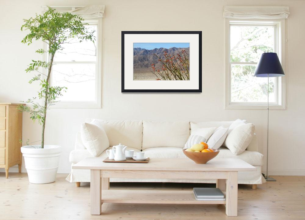 """""""Ocotillo view&quot  (2013) by mojorider2"""