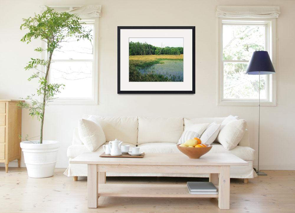 """""""Trees lining grassy pond&quot  by Panoramic_Images"""