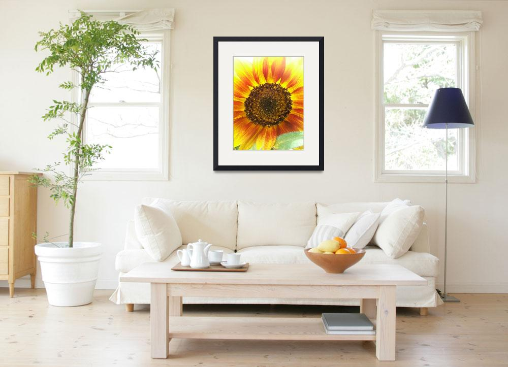 """""""unique sunflower""""  (2009) by LauriesCreations"""