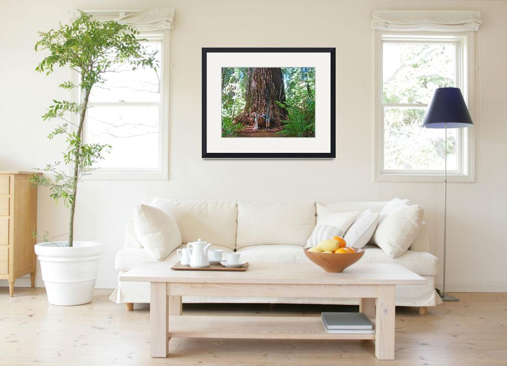 """Imagekind Canvas gifts Redwood Trees Larsen Family&quot  (2013) by BasleeTroutman"