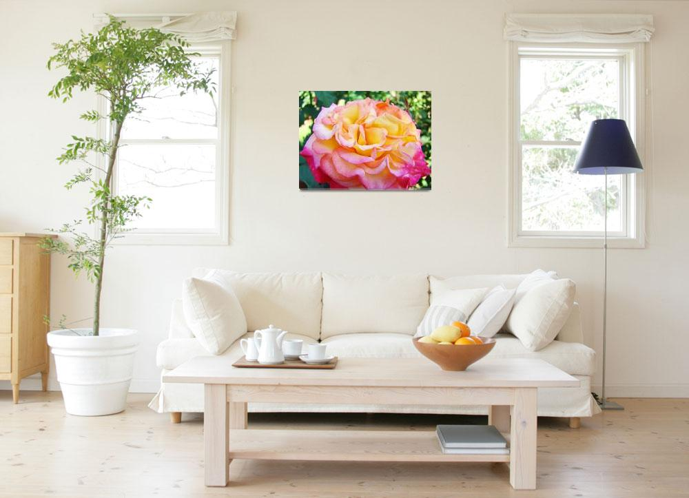 """Roses Pink Yellow Rose Flowers 2 Rose Garden Art&quot  (2009) by BasleeTroutman"