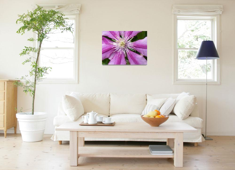 """""""Lily""""  (2012) by brittpix"""
