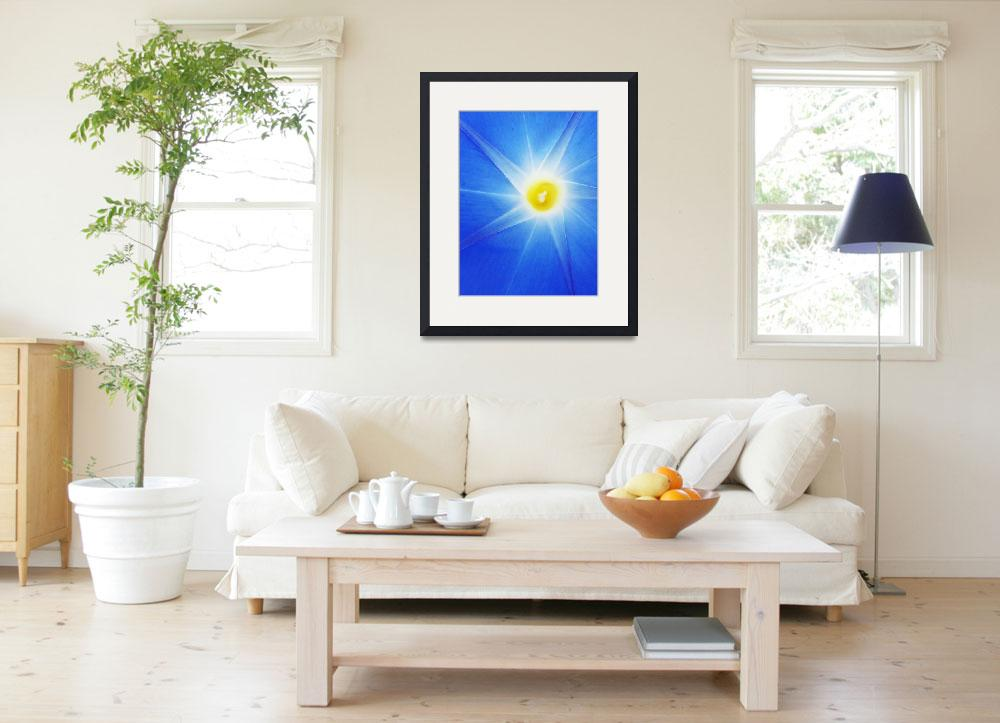 """""""Morning Glory&quot  (2008) by swirlingmist"""