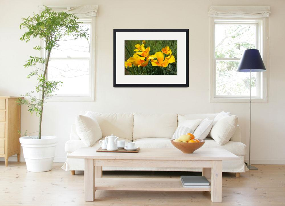 """""""Poppies Flowers Art Prints Poppy Floral&quot  (2014) by BasleeTroutman"""