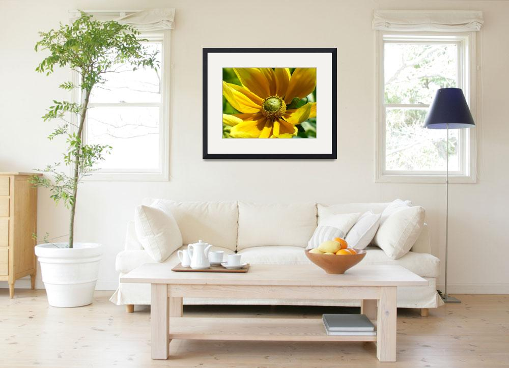 """""""Yellow Flower&quot  (2006) by janetharper"""