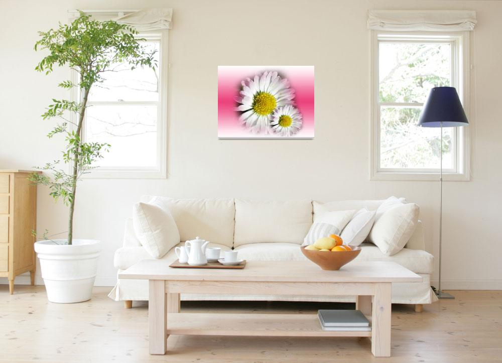 """Daisy Flower Design""  by christelwiser"