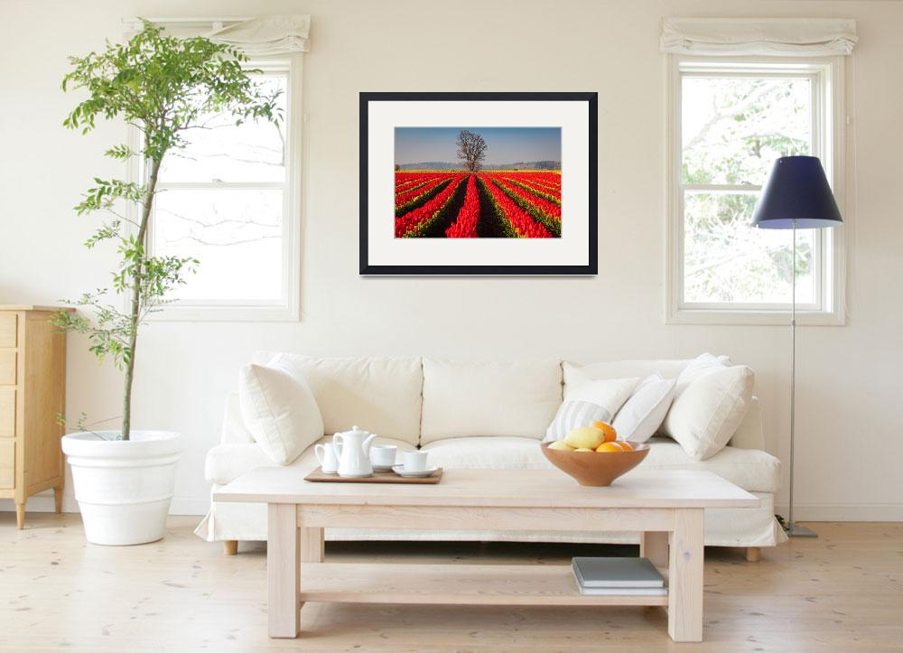 """""""Tulips and Tree&quot  (2011) by Inge-Johnsson"""