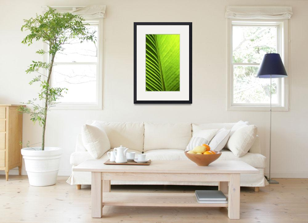 """Palm 08aV Green Lime Yellow&quot  (2010) by Ricardos"