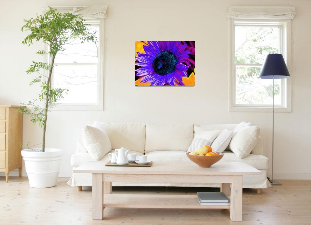 """Flowers_07-01-05_0002 16 soft light copy_pe""  by Swmr152974"