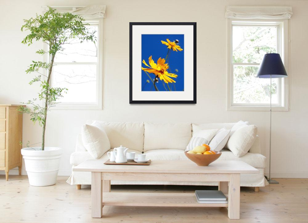 """""""Coreopsis Against The Sky&quot  (2013) by PjCreates"""