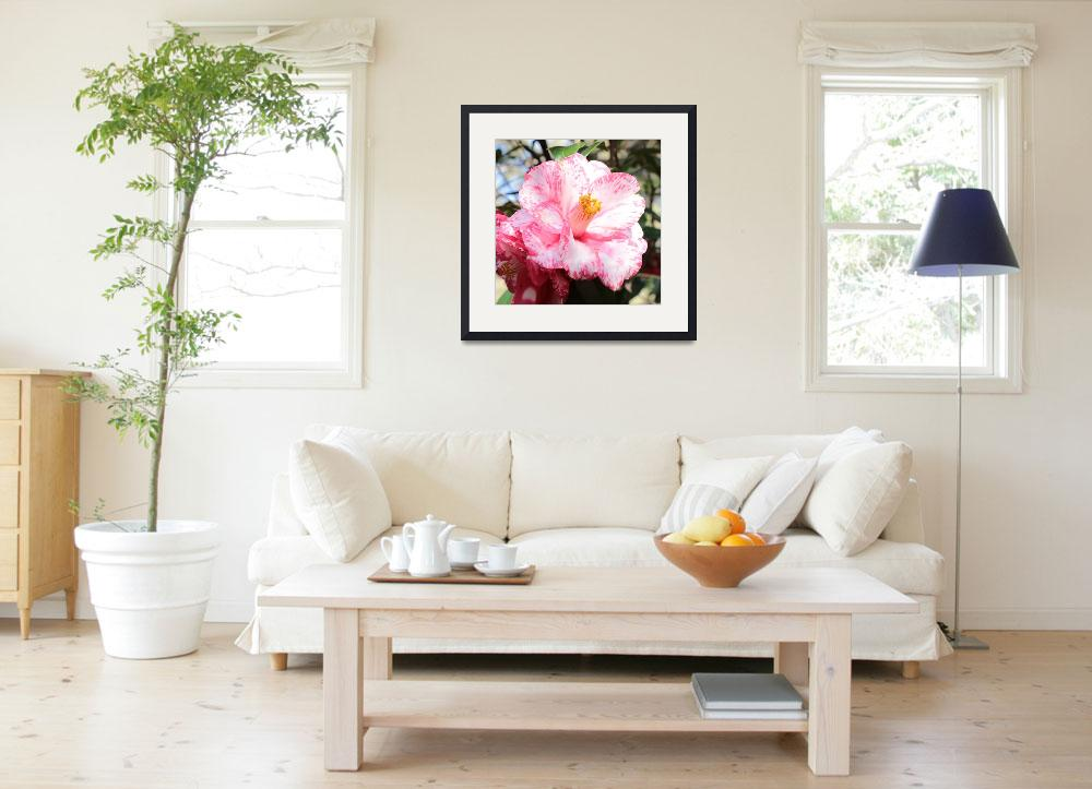 """""""Pink and White Camellia Square""""  by Groecar"""