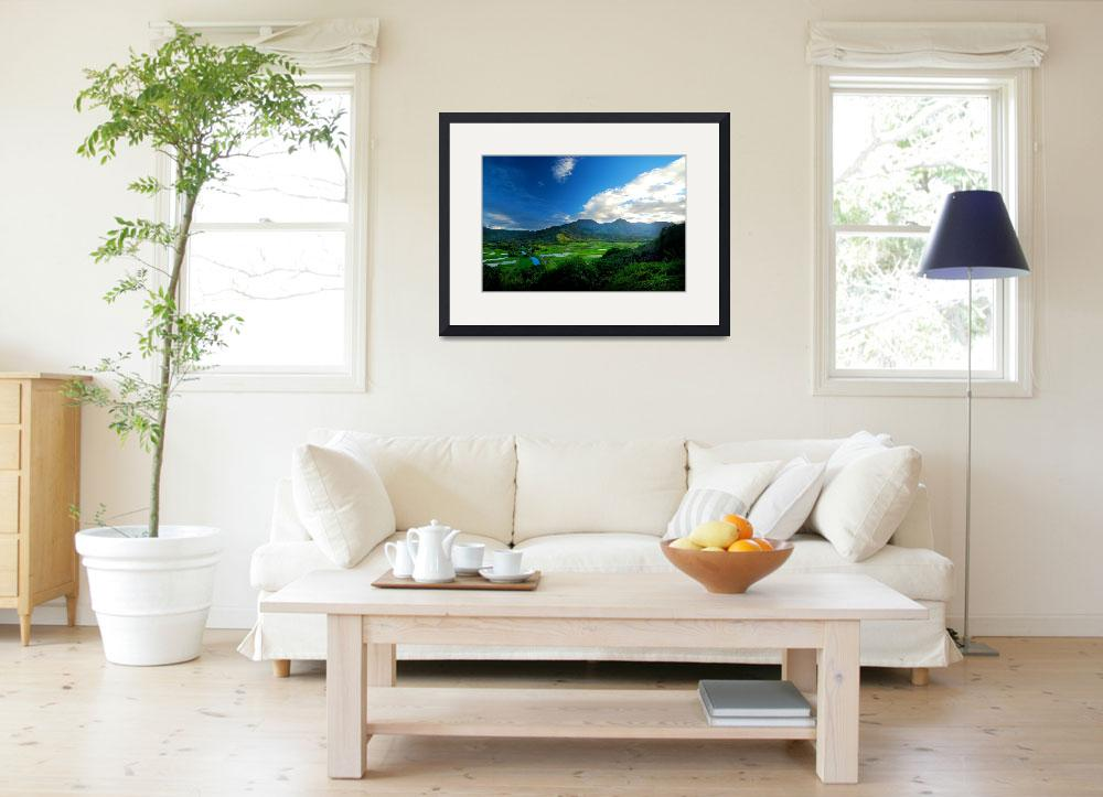 """""""Hanalei River Valley, Kauai&quot  (2010) by PadgettGallery"""