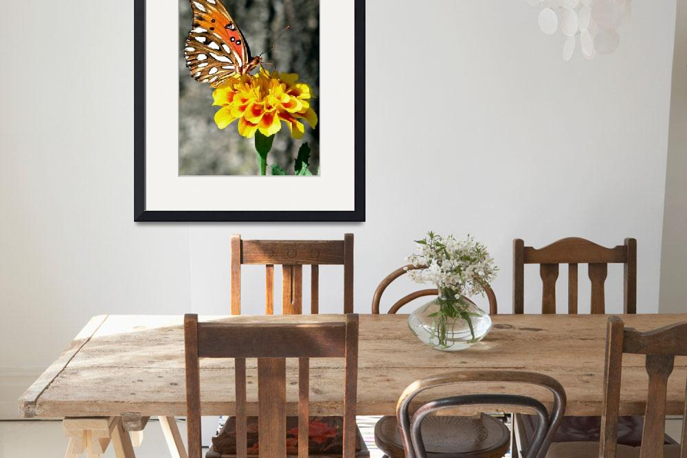 """""""Butterfly and Yellow Flower&quot  by barbee"""