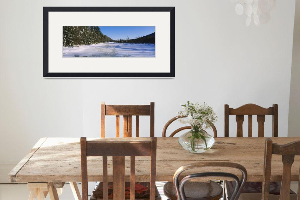 """""""Tress along a frozen lake&quot  by Panoramic_Images"""