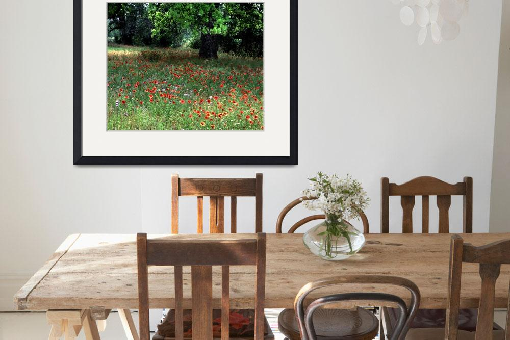 """""""texas wildflowers indian blanket and marroon blank&quot  by RichardBaumer"""