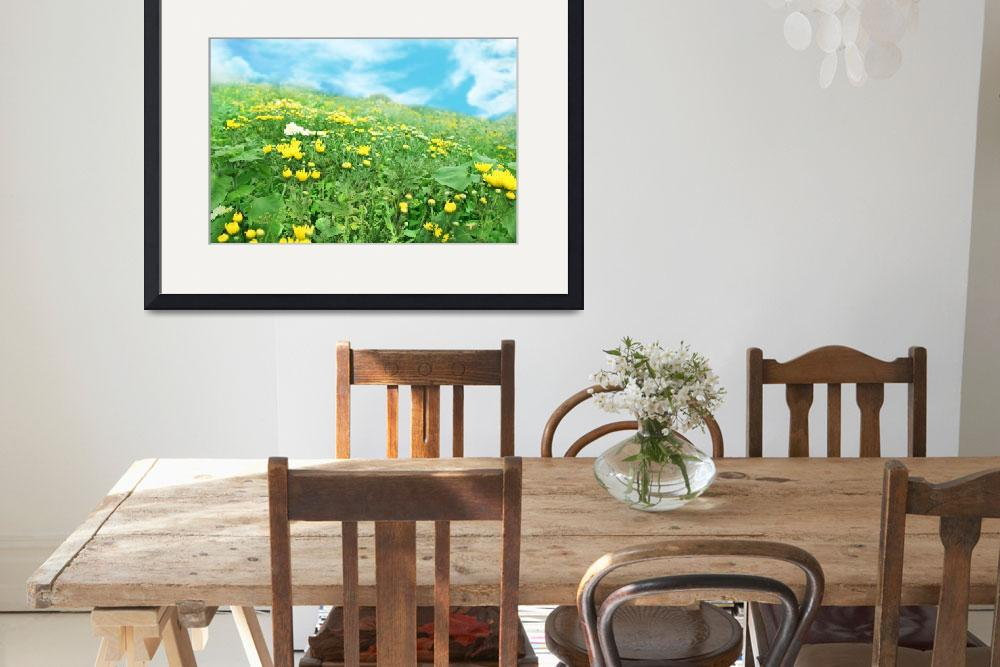 """""""Field of Wildflowers&quot  (2012) by charker"""