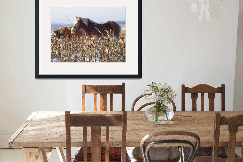 """""""Amish Work Horses at Liberty&quot  (2008) by suesteiner"""