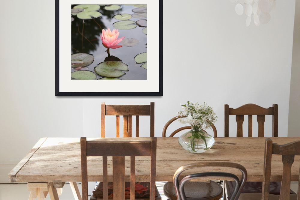 """""""Waterlilly Bud&quot  (2007) by KatieBPhoto"""