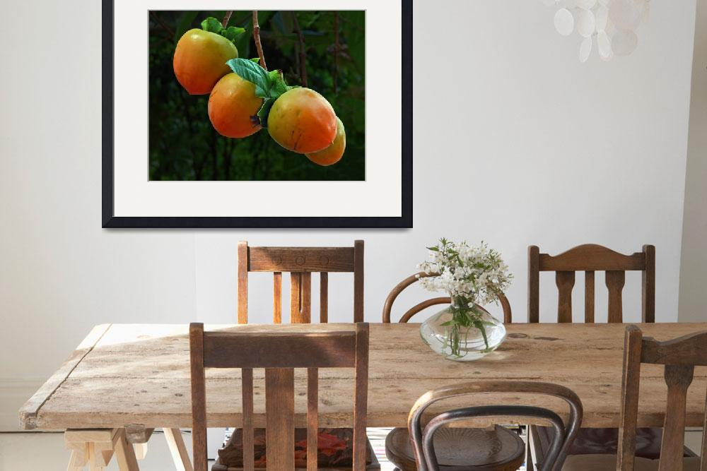 """""""Persimmons""""  (2012) by swazoo"""
