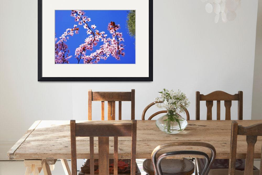 """""""Pink Tree Blossoms Art Prints Blue Sky Floral&quot  (2014) by BasleeTroutman"""