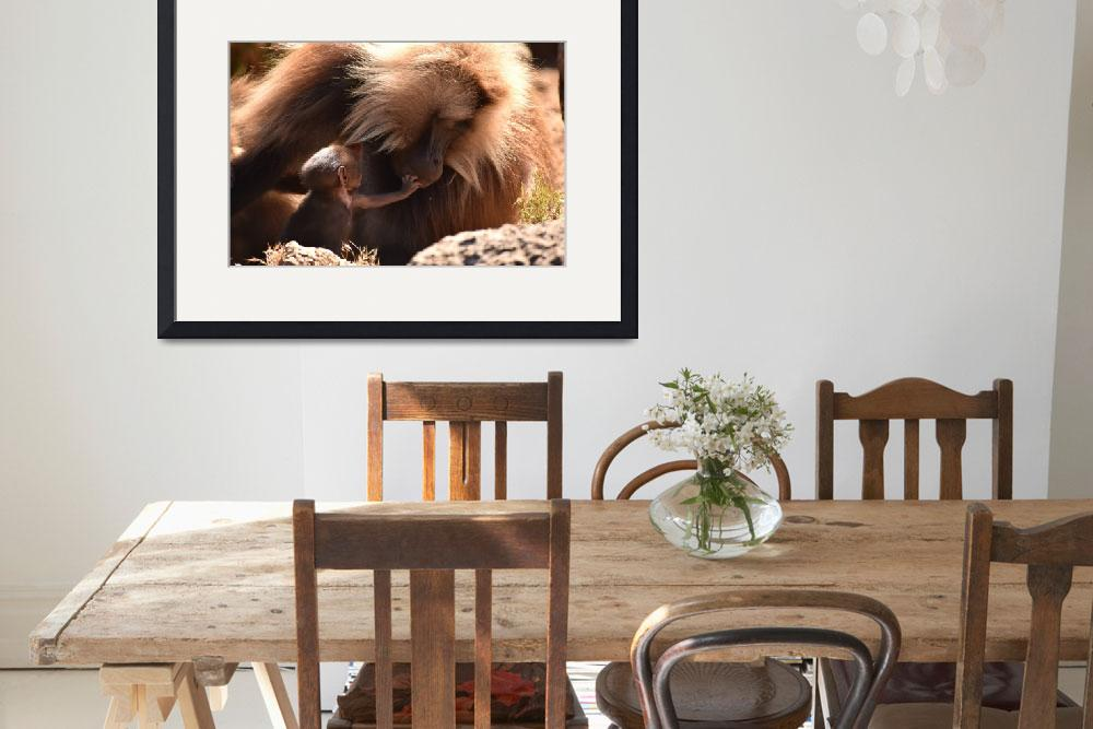 """""""Mother Gelada (bleeding heart) baboon with baby""""  (2018) by Mickcarr"""