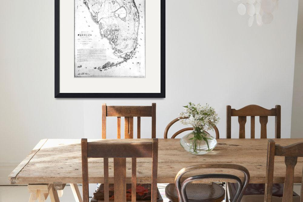 """""""Vintage Map of Southern Florida (1856)&quot  by Alleycatshirts"""