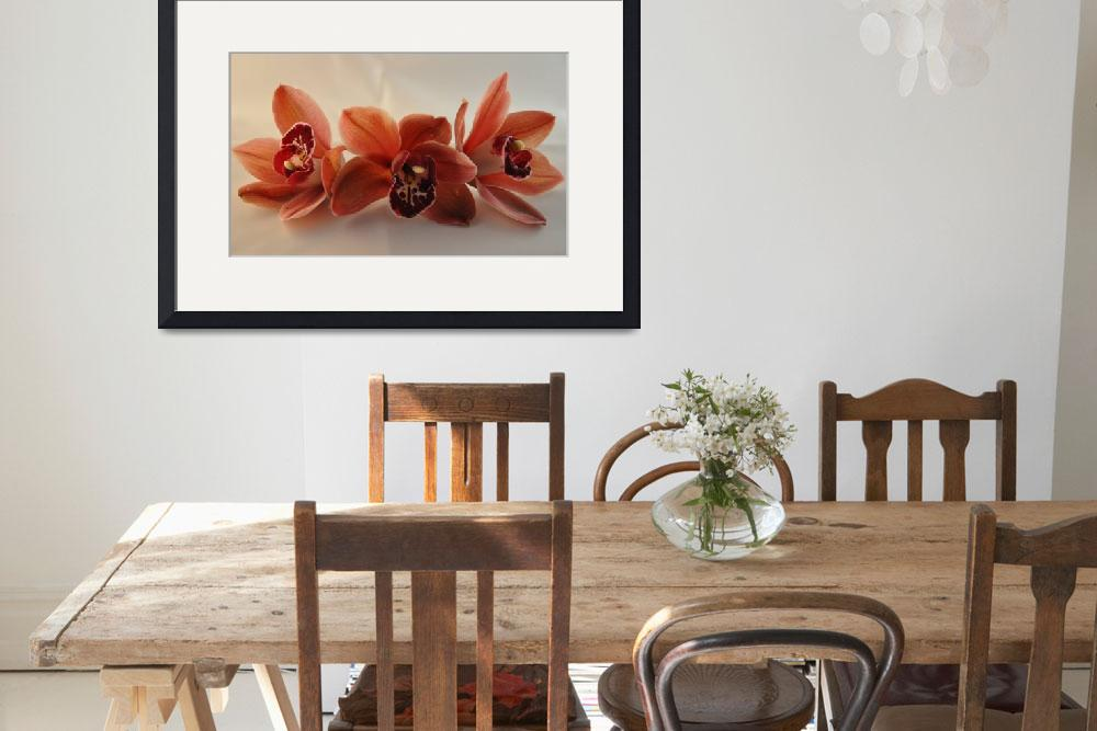 """""""Orchid Trio""""  by Kirtdtisdale"""