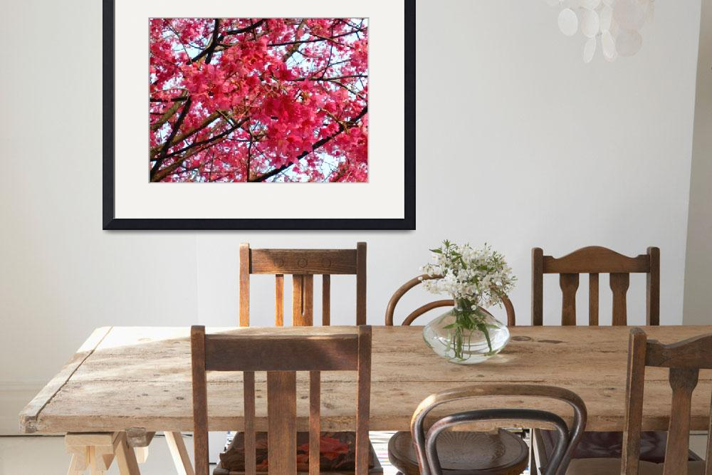 """""""Blooming cherry blossom&quot  (2013) by lanjee"""